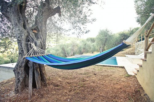 Colourful hammock on tree in summer
