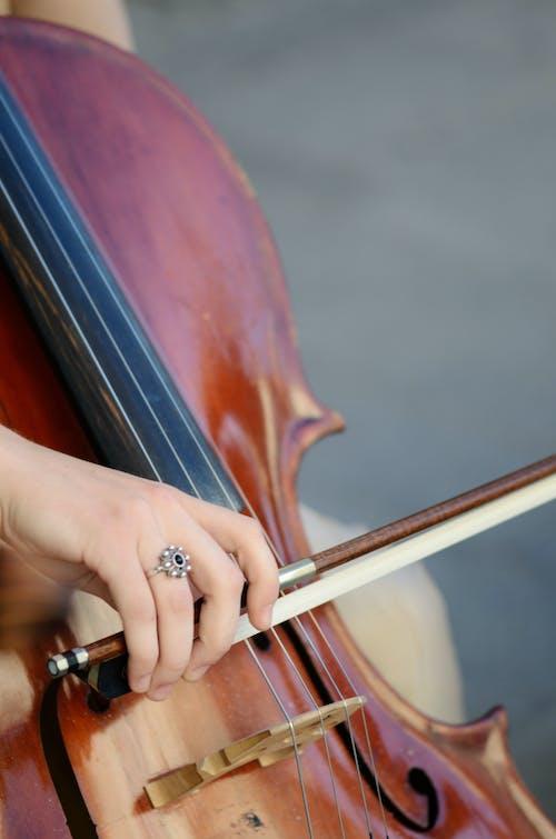 Foto profissional grátis de apresentação, corda, instrumentalista, instrumento