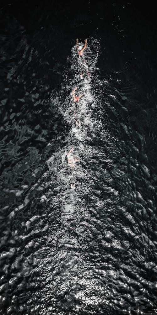 Fotos de stock gratuitas de acción, activo, aéreo, aguamarina