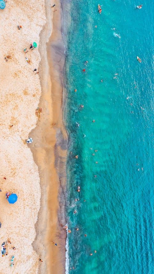 休閒, 俯視圖, 假日, 假期 的 免费素材图片