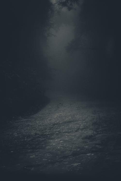 Misterioso Vicolo Spettrale Nella Foresta Oscura