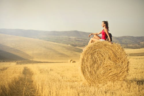 Woman in Red Tank Top Sitting Hay Roll
