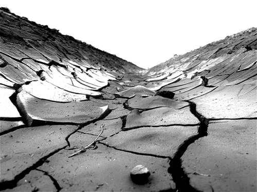 Grayscale Photo of Soil Cracks