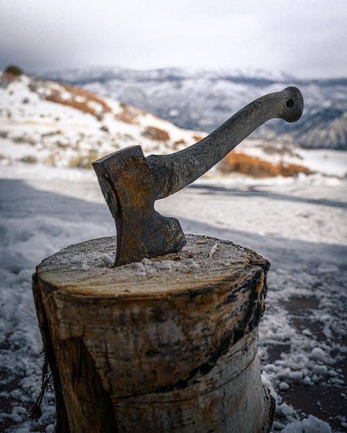Základová fotografie zdarma na téma dřevo, klika, madlo, nástroj