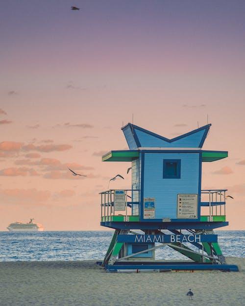 Foto profissional grátis de à beira-mar, água, América, ao ar livre