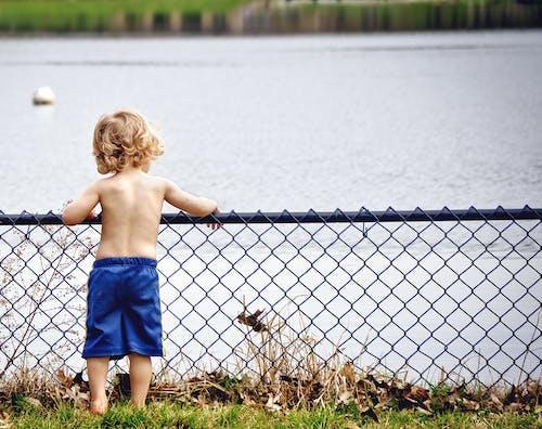 Fotobanka sbezplatnými fotkami na tému chlapec, dieťa, drôtené pletivo, mladý