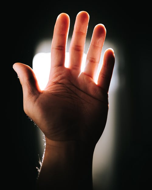 Free stock photo of backlight, backlit, fingers, glow