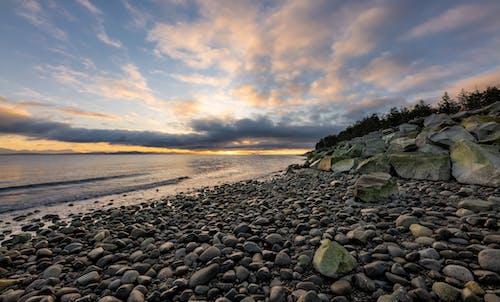 アウトドア, おとこ, カナダ, キンビーチ州立公園の無料の写真素材