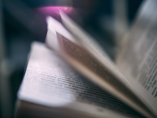 Close-up Photography of Book Pages