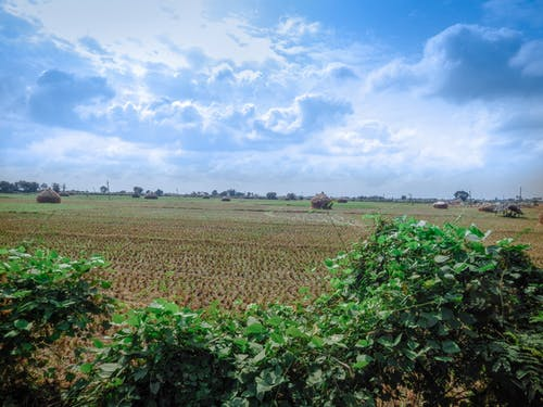 Free stock photo of country side, farm, heaven