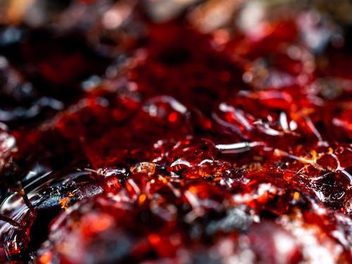 doğa, doğal, kırmızı, makro içeren Ücretsiz stok fotoğraf