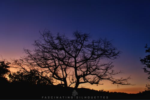 Free stock photo of 4k wallpaper, desktop wallpaper, india, landscape photography