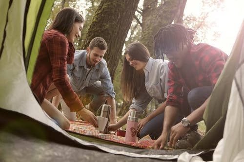 From below of group of diverse people in casual clothes sitting on ground and having picnic in camping