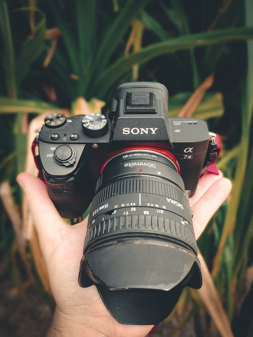 Black Sony Dslr Camera on Person's Hand