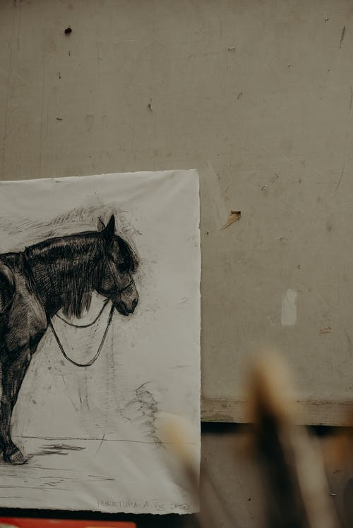 Black and White Horse Sketch