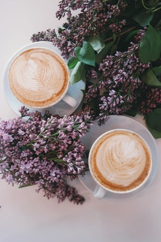 Free stock photo of coffee, flowers, purple, table