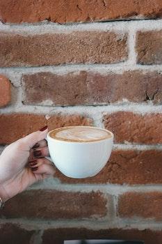 Free stock photo of coffee, hand, girl, holding