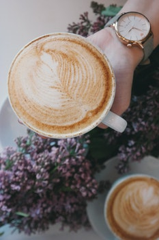 Free stock photo of woman, coffee, cup, hand