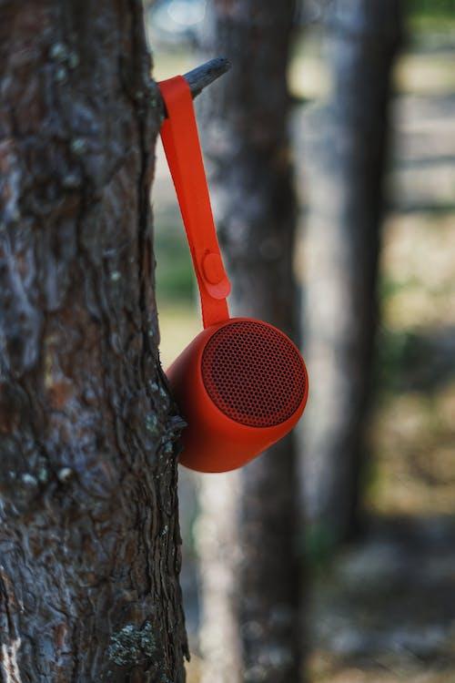 Haut Parleur Bluetooth Suspendu Au Tronc D'arbre