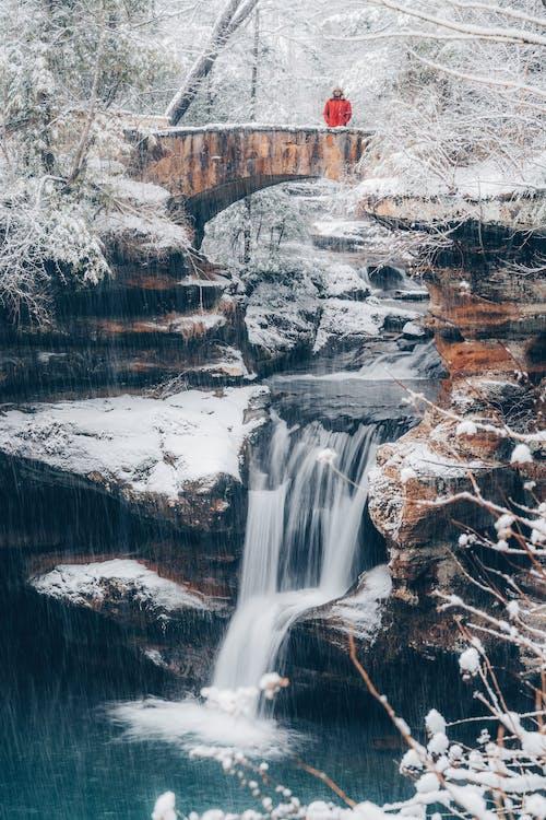 Photos gratuites de arbre, bois, caillou, canyon