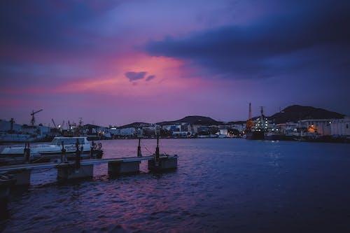Free stock photo of boats, pier, port, purple