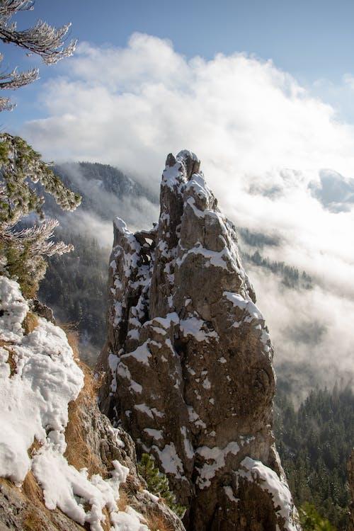 健行, 冬季, 冰, 冷 的 免费素材照片