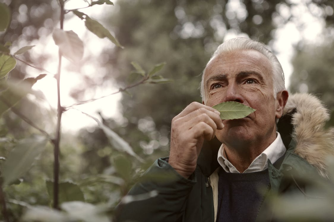 Adult Man Smelling a Leaf