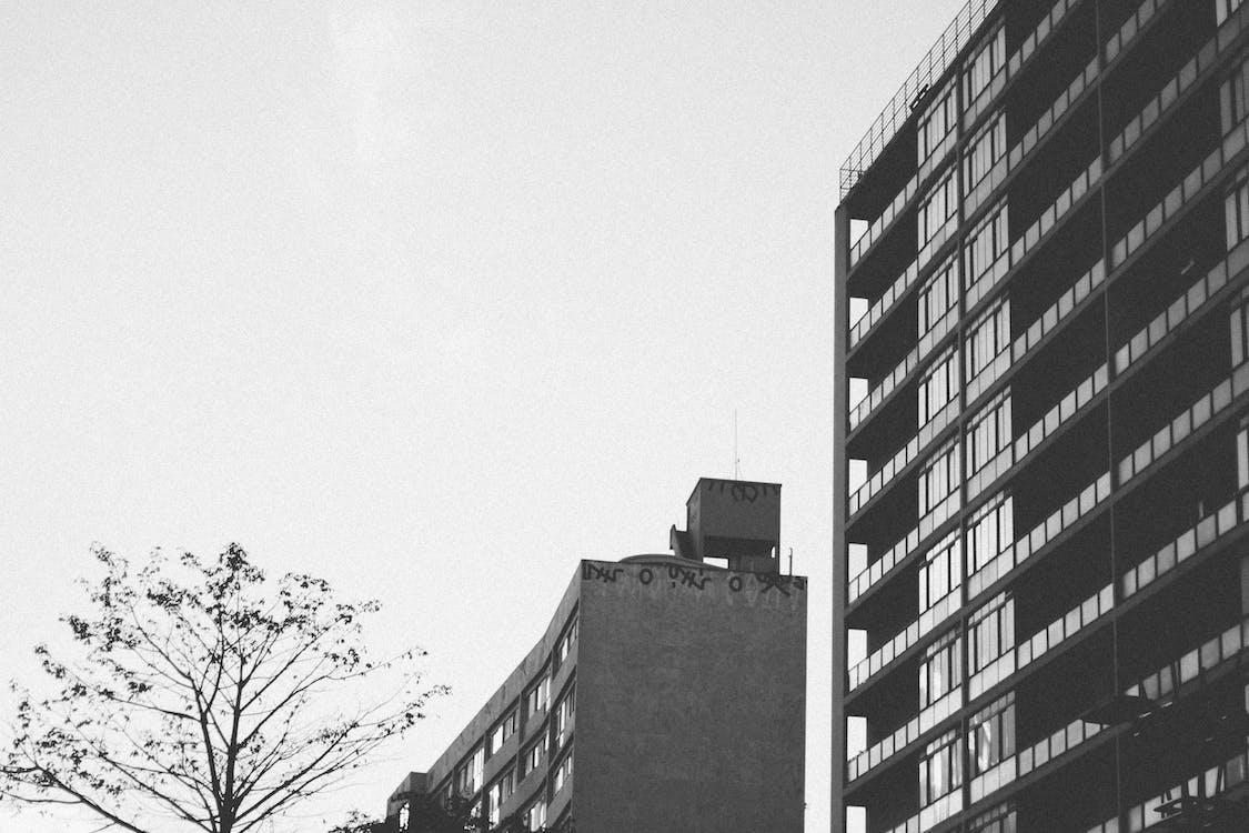 Grayscale Photo of Concrete Building Near Tree