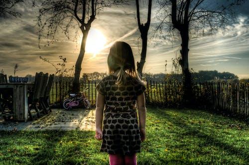 Gratis stockfoto met achtererf, iemand, jong, meisje