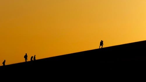 Silhouette Photo of People Traveling