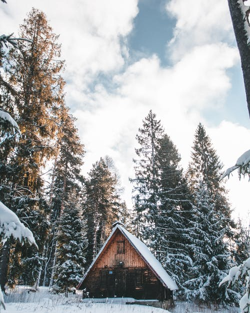 Brown Wooden House in the Middle of Snow Covered Trees Under White Clouds
