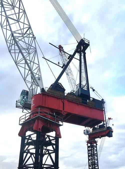 Gratis arkivbilde med anleggsmaskiner, barangaroo, byggeplass, havnekran