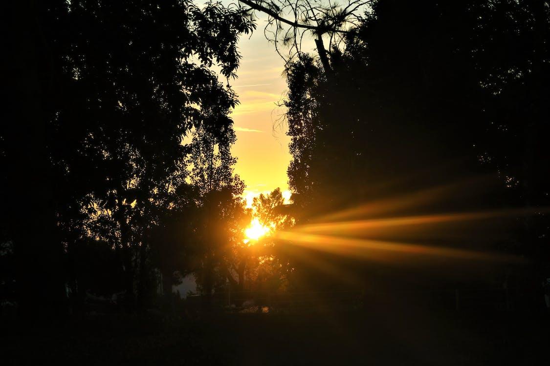 akşam, gün batımı, manzara