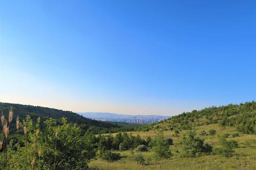 Free stock photo of ağaçlar, arazi, doğa, manzara
