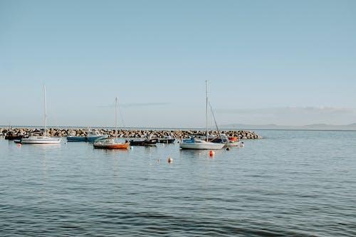 Gratis lagerfoto af både, badebro, bugt, hav
