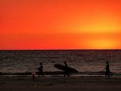 sea, sunset, surfer