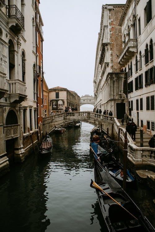 イタリア, ヴェネツィア, ウォータークラフトの無料の写真素材