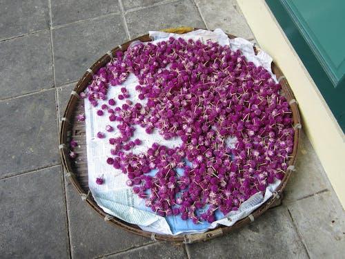 Δωρεάν στοκ φωτογραφιών με αγορά, ξηρά άνθη