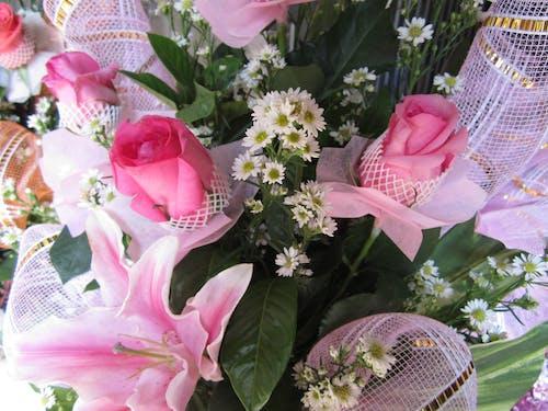 Δωρεάν στοκ φωτογραφιών με μπουκέτο λουλούδια