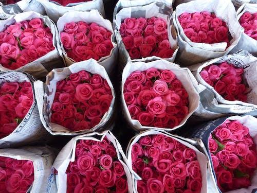 Δωρεάν στοκ φωτογραφιών με μπουκέτο λουλούδια, ροζ τριαντάφυλλα