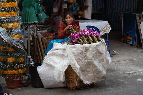 Δωρεάν στοκ φωτογραφιών με αγορά, ορχιδέα