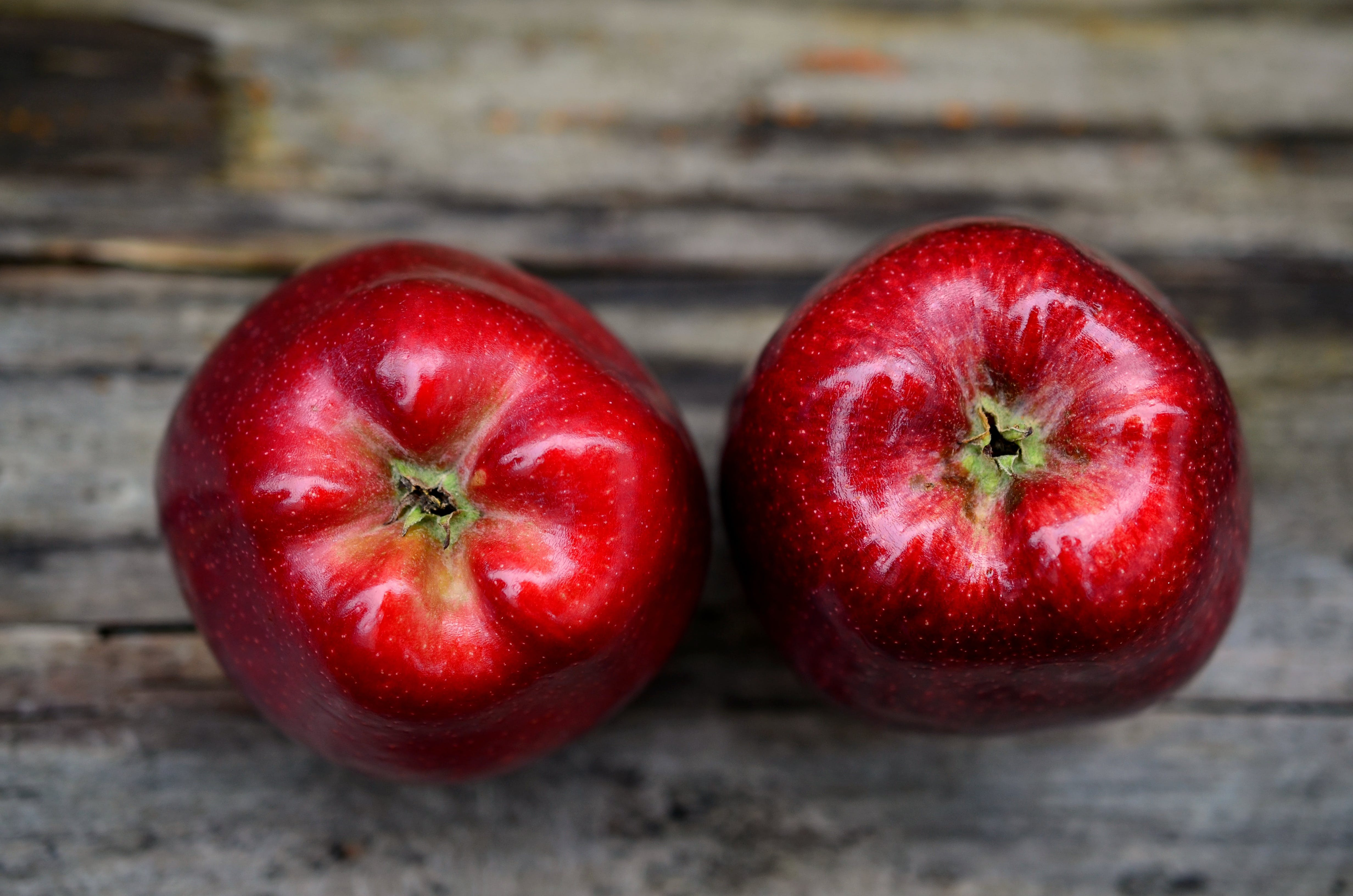Two Red Ripe Apple on Gray Table