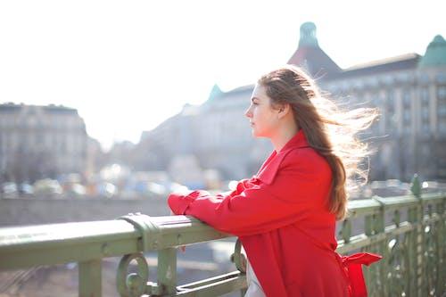 Δωρεάν στοκ φωτογραφιών με αεράκι, άνεμος, ανεμώδης