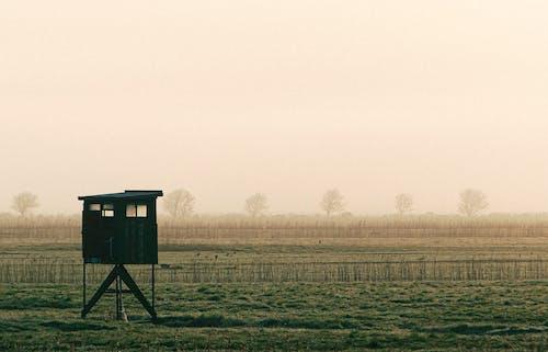 Kostenloses Stock Foto zu 4k wallpaper, deich, early morning, grass
