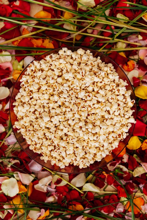 White Popcorn on Red Plate on a Floral Background