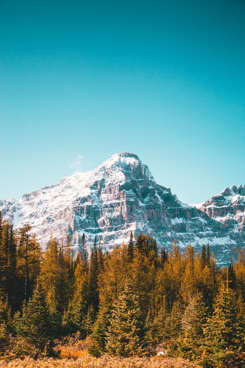 Kostnadsfri bild av Alberta, banff, banff nationalpark, bergen