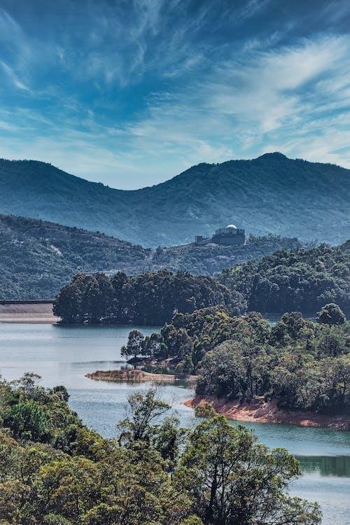 Darmowe zdjęcie z galerii z drzewa, góry, hong kong, jezioro
