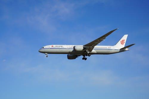 Gratis lagerfoto af blå himmel, dagslys, flyrejse, flyselskab