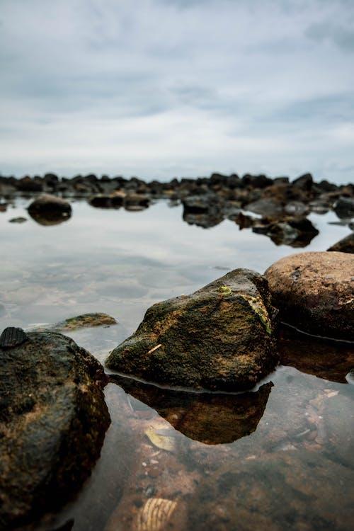 Бесплатное стоковое фото с вода, океан, песок