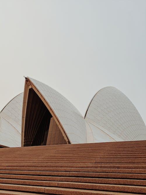 白色和棕色的混凝土建築